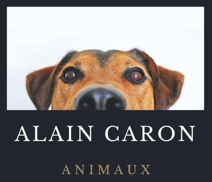 Alaincaron